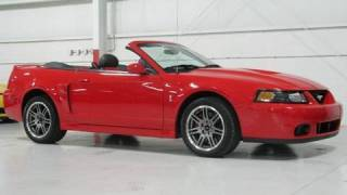 Ford Mustang Cobra Convertible--Chicago Cars Direct HD