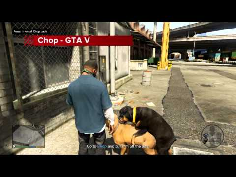 news: Top 10 Dogs in Video Games