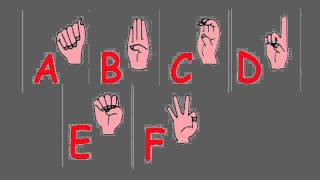 ABC Song - The alphabet song using American Sign Language - Learn Sign Language