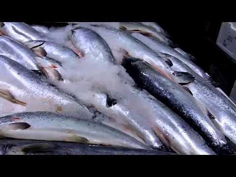 A London Fish Market