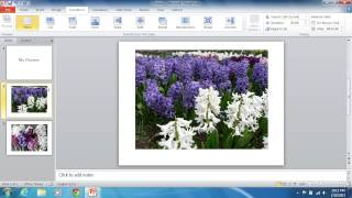 How To Make PowerPoint 2010 Slides Advance Automatically