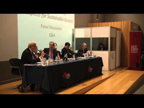 LSE SU CDS_China Development Forum 2013:The Chinese Economy  Prospects for Sustainable Growth Part 2