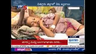 2,000 dengue cases reported in Chittoor