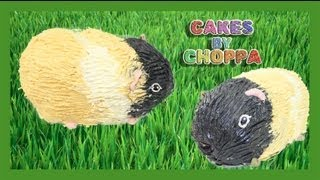 Guinea Pig Cake (how to)
