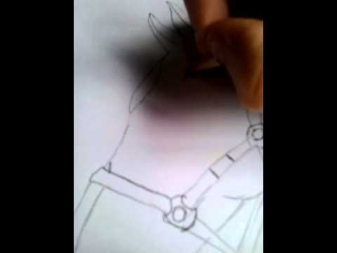 Hoe teken je een paard 1