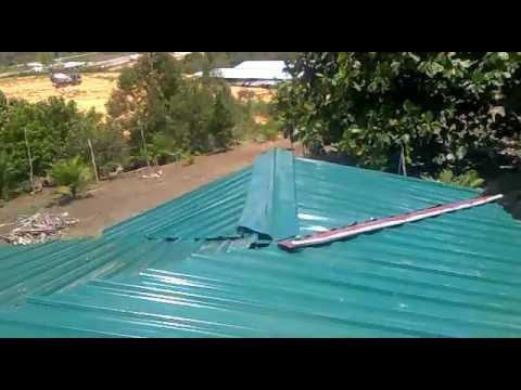 230720124511 Atap Rumah Burung Walet