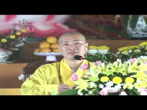 Tấm Lòng Của Biển - Thích Thiện Thuận