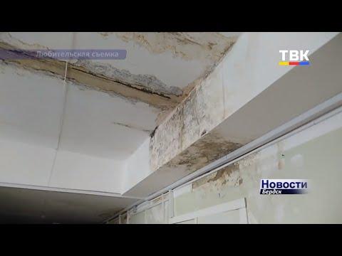 Сырость, плесень и грибок – дополнительная «терапия» в Бердске в больнице на Боровой, 109