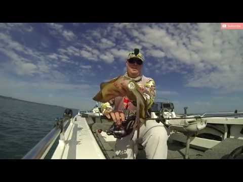 Fish That Snag - Part A & B series + Competitions - Part B Hunting Tiger Squid