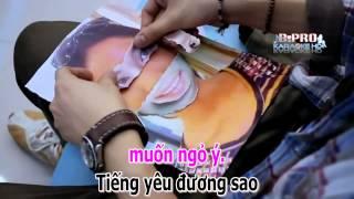 KARAOKE TINH DON PHUONG REMIX MELODY HD