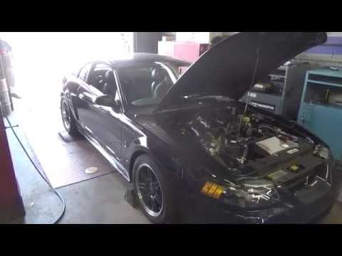 LtxTech dyno day 2001 ford mustang cobra 2014 performance specialties