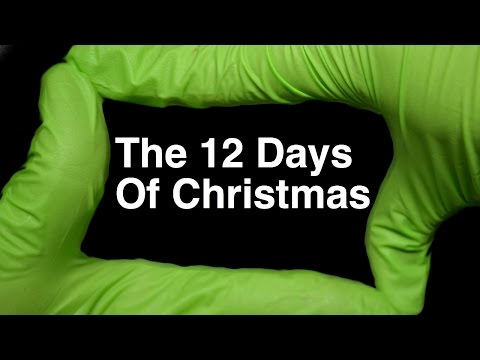 The 12 Days of Christmas by Runforthecube No Autotune Cover Song Parody Lyrics - YouTube