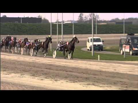 Vidéo de la course PMU PRIX D'ALKMAAR (MAIN WISE AS CHALLENGE)