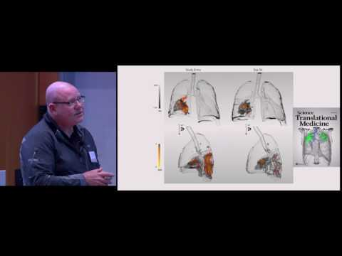 Understanding TB Lesion Pathology and Its Response to Chemotherapy