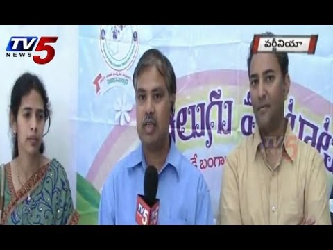SiliconAndhra ManaBadi Programme in Virginia : TV5 News