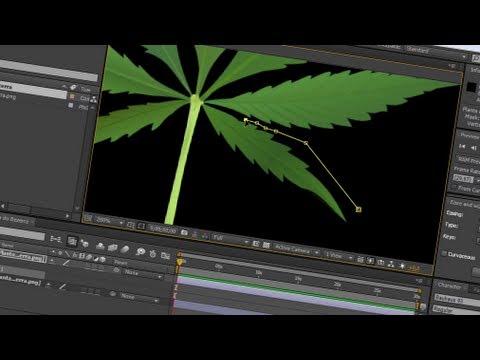 16. After Effects: Evolução de plantas e objetos
