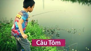 CÂU TÔM | SHRIMP FISHING