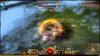 GW2 High DPS Warrior WvW (Rangers Nightmare)