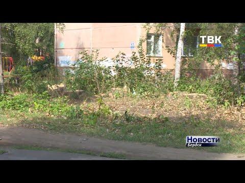 У жителей дома Микрорайон, 59 есть ряд претензий к муниципальным службам Бердска