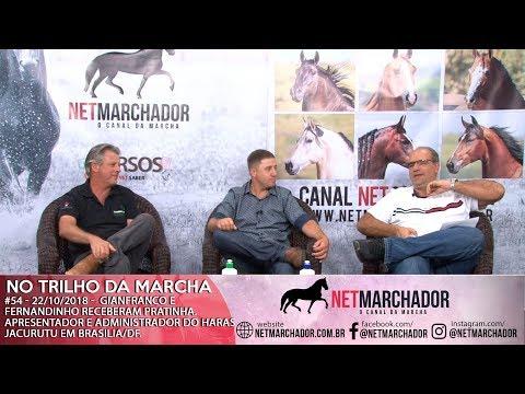 #54 - 22/10/2018 - PRATINHA APRESENTADOR E ADMINISTRADOR DO HARAS JURUCUTU - MANGALARGA MARCHADOR