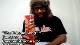 The Pringle Song (Man With The Pringle Can) Cameron J