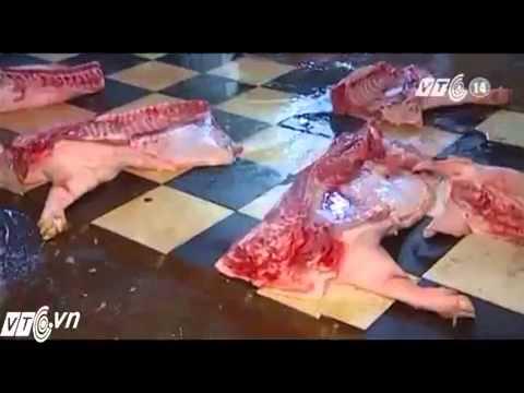 Nhìn những hình ảnh này ai còn dám ăn thịt lợn?