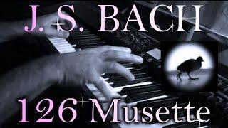 Johann Sebastian BACH: Musette in D major, BWV Anh. 126 view on youtube.com tube online.