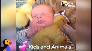 Kids and Animals LOVE Each Other Compilation | The Dodo