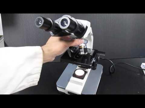 顯微鏡之使用