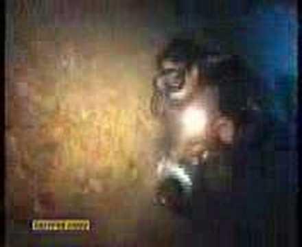 Il relitto del Thistleghorm (Calypso Sub)