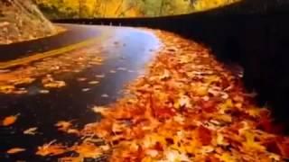 Крайм Волшебник - Осень