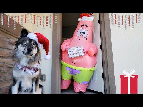 Kakoa's Pretend Play Gift Giving on Christmas!