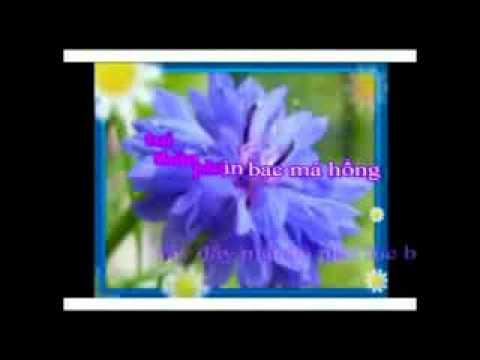 Karaoke Bong 6 Binh(DSG Moi Feat).