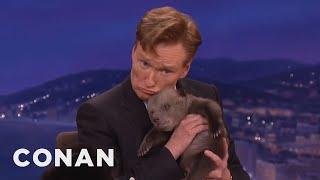 Animal Expert David Mizejewski: Black Bear & Brown Bear Cubs  - CONAN on TBS