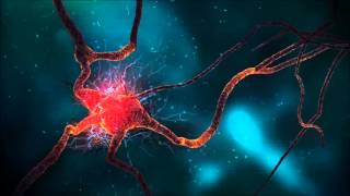 Human Growth Hormone, Binaural Beats Brainwave Entrainment