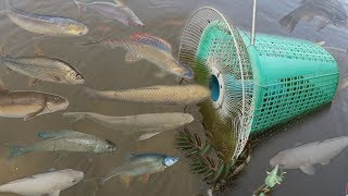Creative Girl Make Fish Trap Using PVC - Fan Guard -  Basket To Catch A Lot of Fish