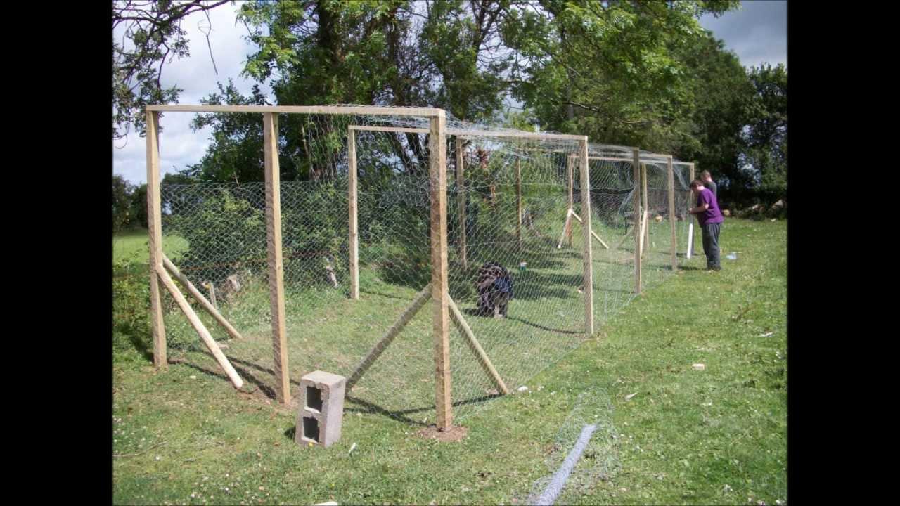 access plans for pheasant coop marscoop