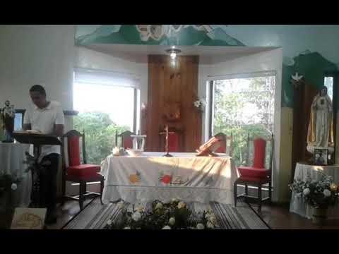 Santa Missa | 09.11.2020 | Segunda-feira | Padre José Sometti | ANSPAZ