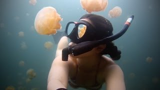 One Of The Most Amazing GoPro Videos You'll Ever See