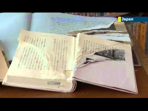 Tokyo police catch Anne Frank diary vandal