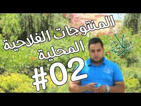 تراب بلادي -الحلقة الثانية