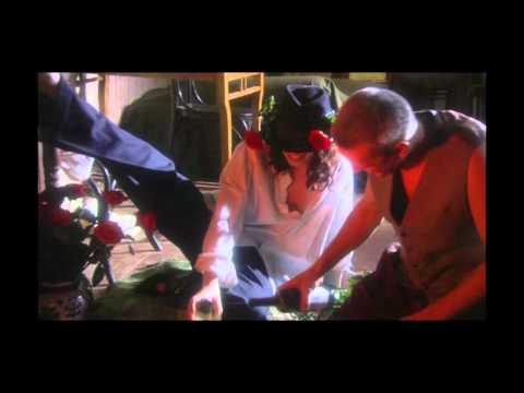 Смотреть клип Макс Покровский - Безумные ночи