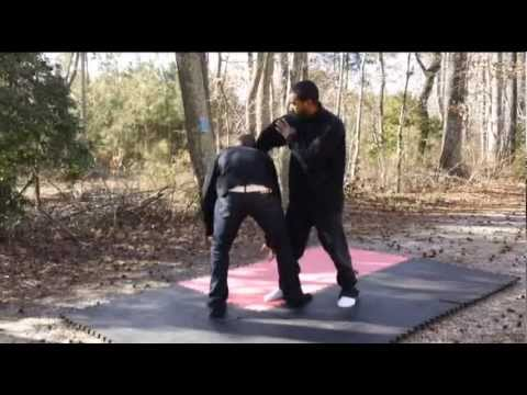 Ninjutsu: Self defense- fluid movement & precise striking