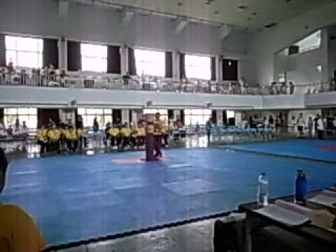 第四屆中華盃全國武術功夫錦標賽-比賽實錄-7