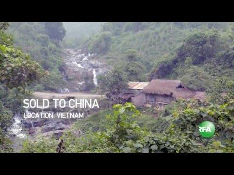 Chuyện kể của một cô gái Việt Nam bị bán sang Trung Quốc