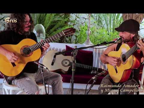 Raimundo Amador y Miguel Campello improvisando con sus guitarras Francisco Bros.