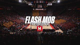 Maryland Students Flash Mob I (2013)
