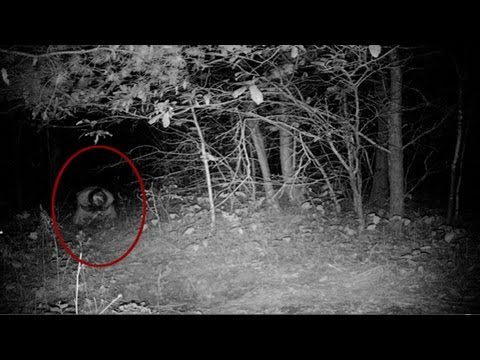 UNEXPLAINED Real Scary Demon Attacks Guy Going to the Toilet