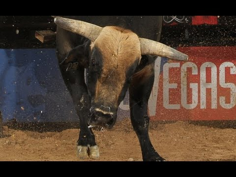 PBR World Champion Silvano Alves 87.5 points on High Octane Hurricane
