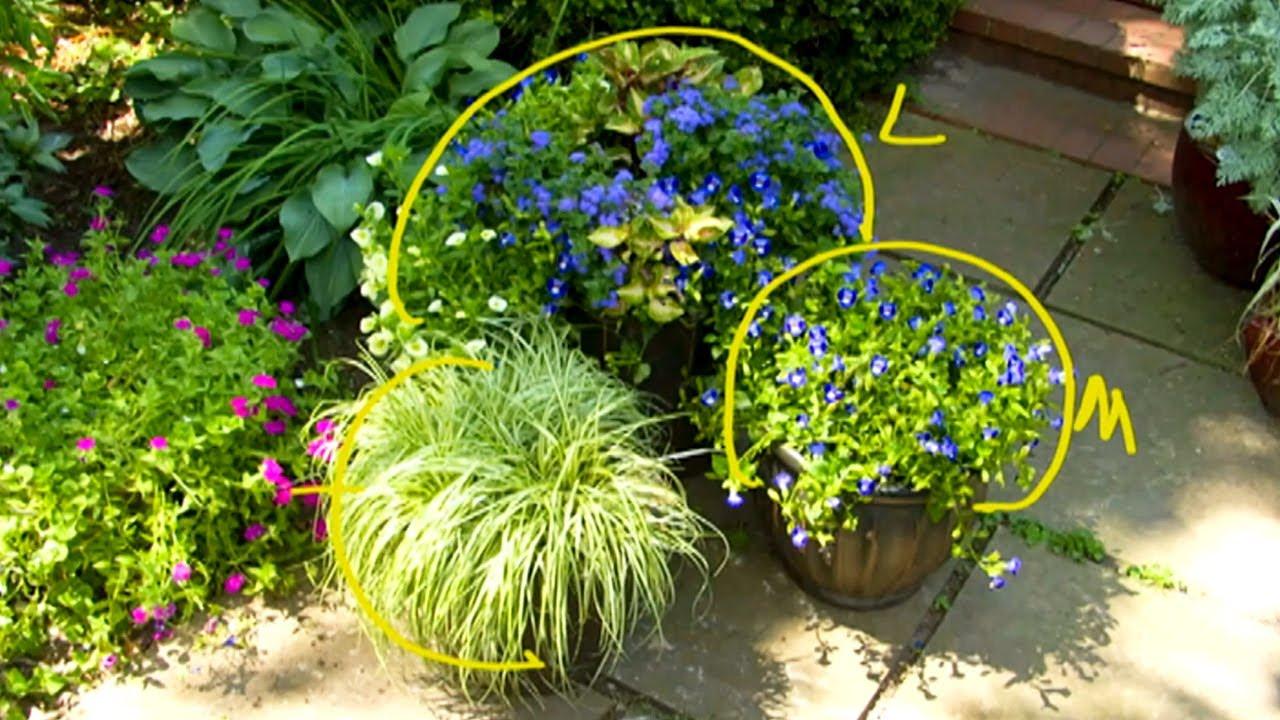 The basics of container garden color design p allen smith classics youtube - P allen smith container gardens ...